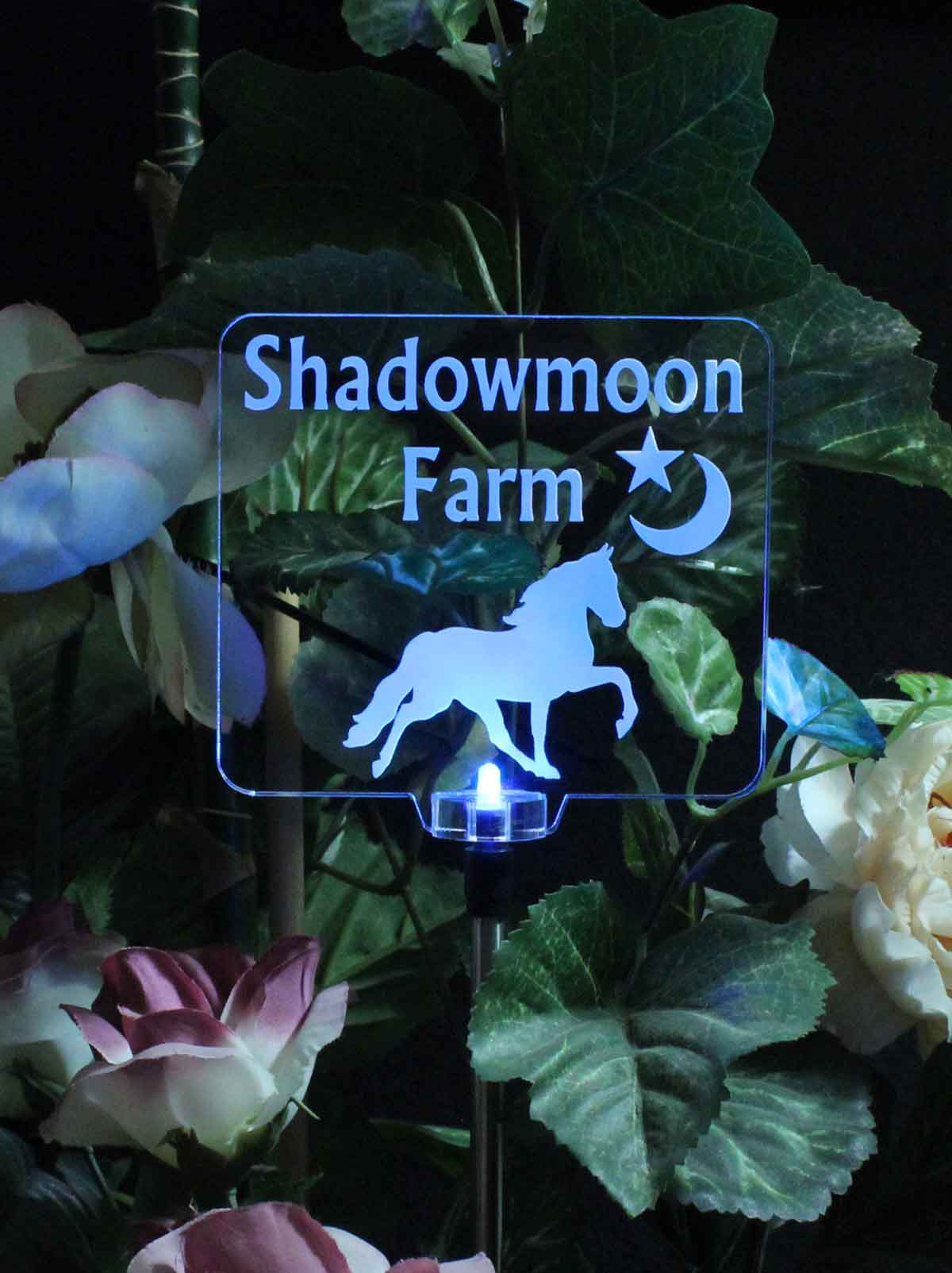 Personalized Horse Solar Light