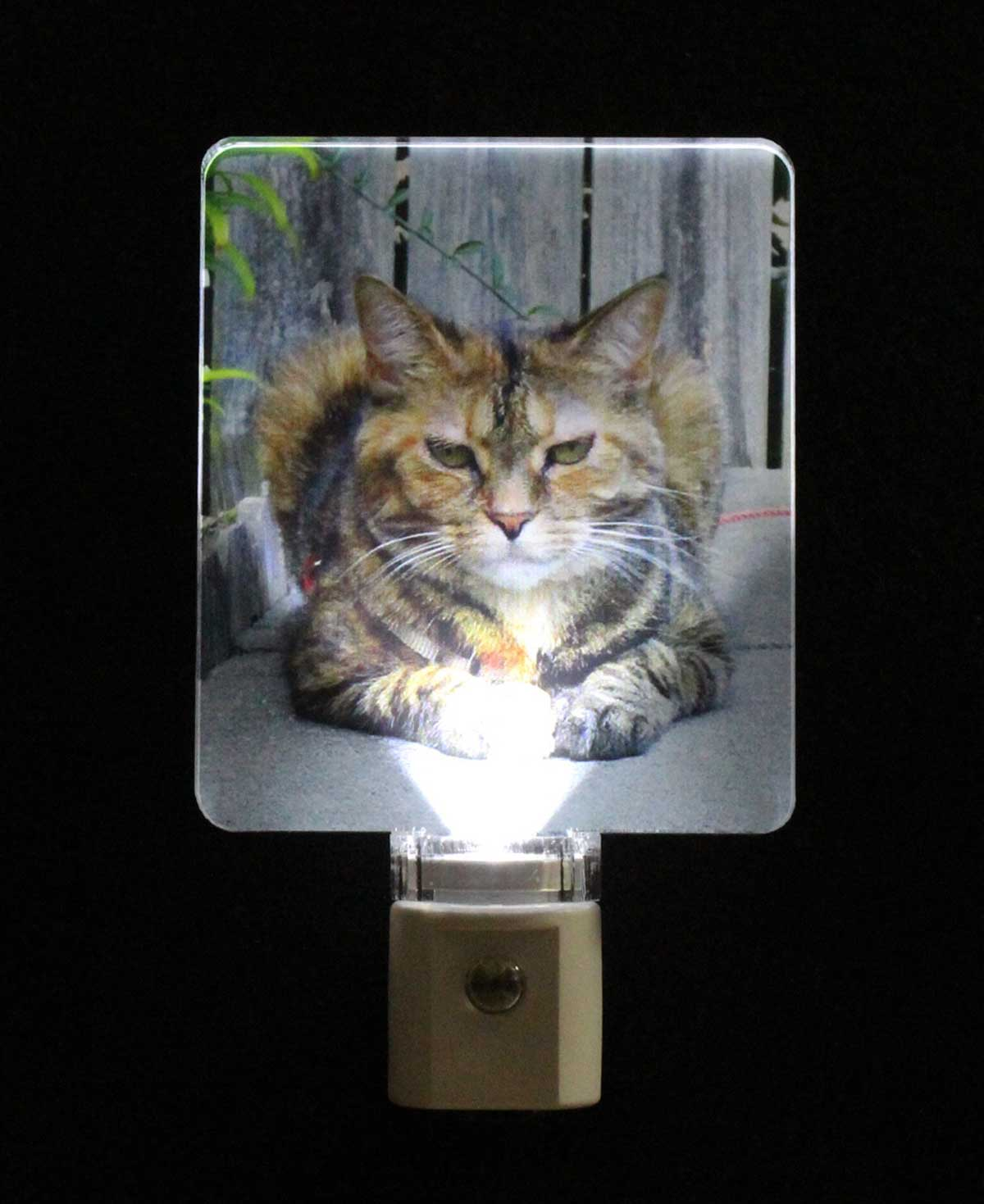 Full Color Personalized Animal Photo Night light - UV Printed