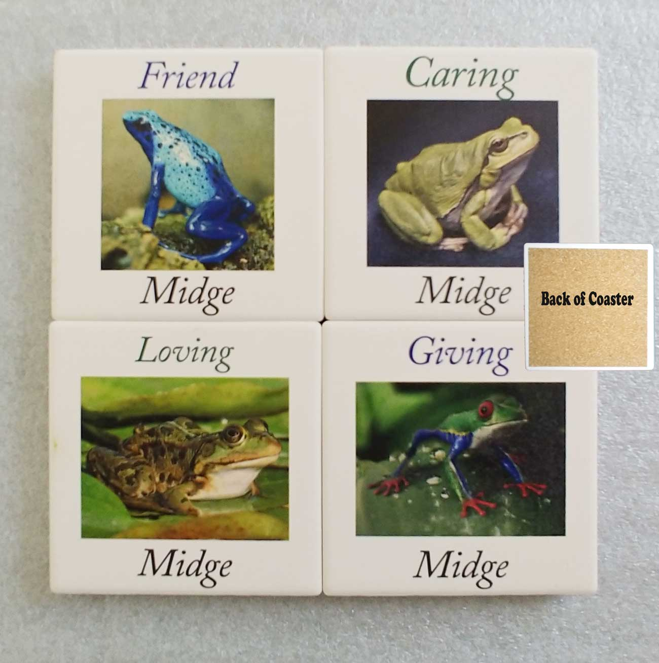 Personalized Frog Coasters UV Printed Absorbent Stone coasters Qty 1