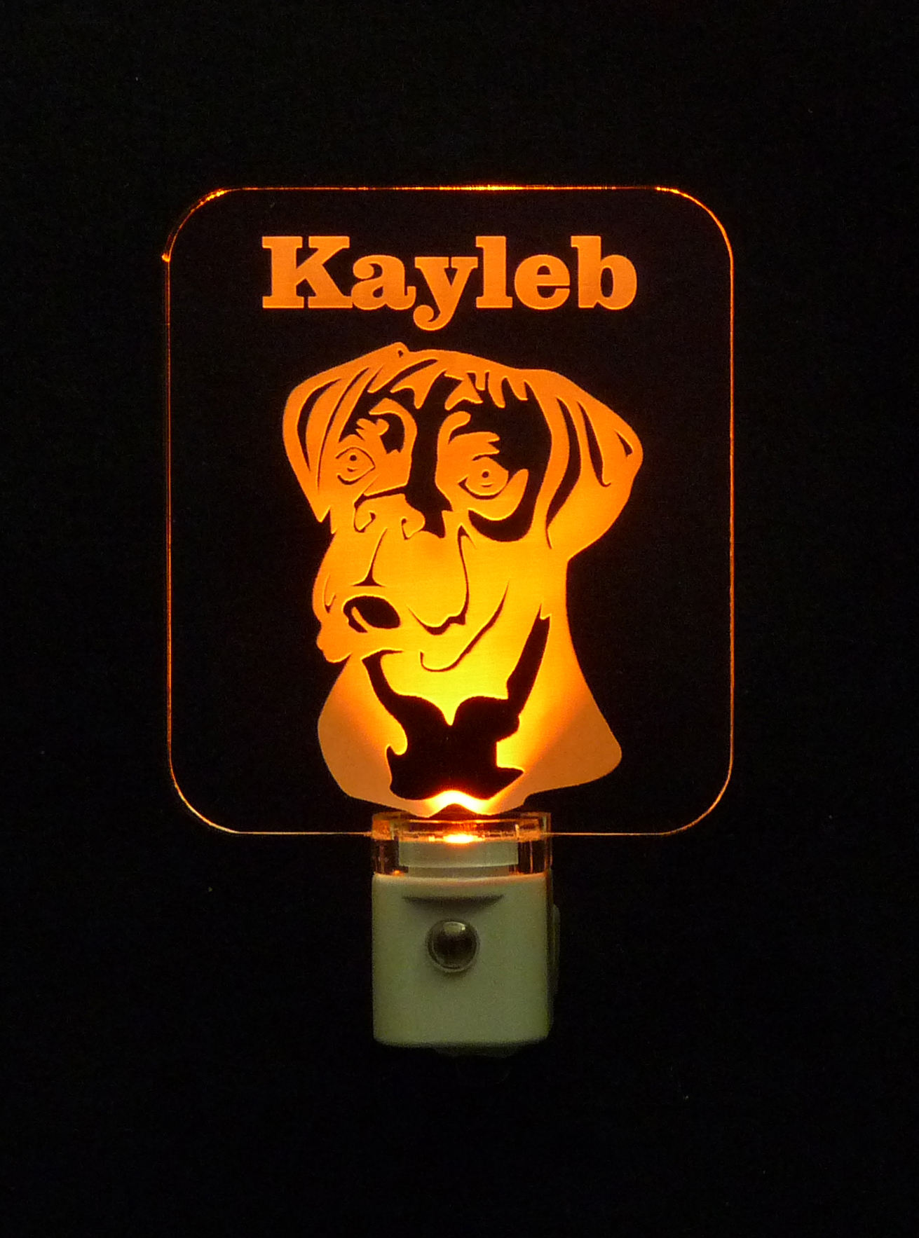 Personalized Boxer LED Night Light