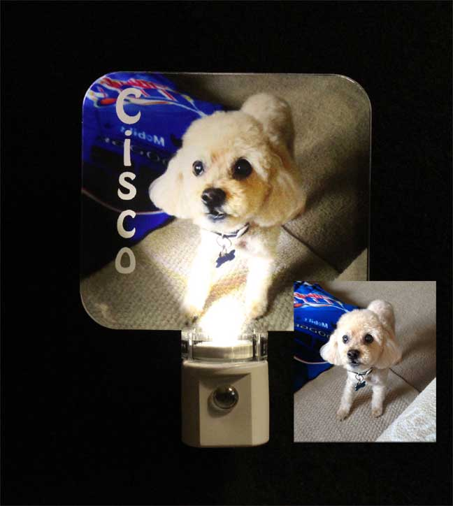 Full Color Personalized Animal Photo Night Light